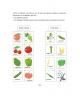 Frutos - botanica